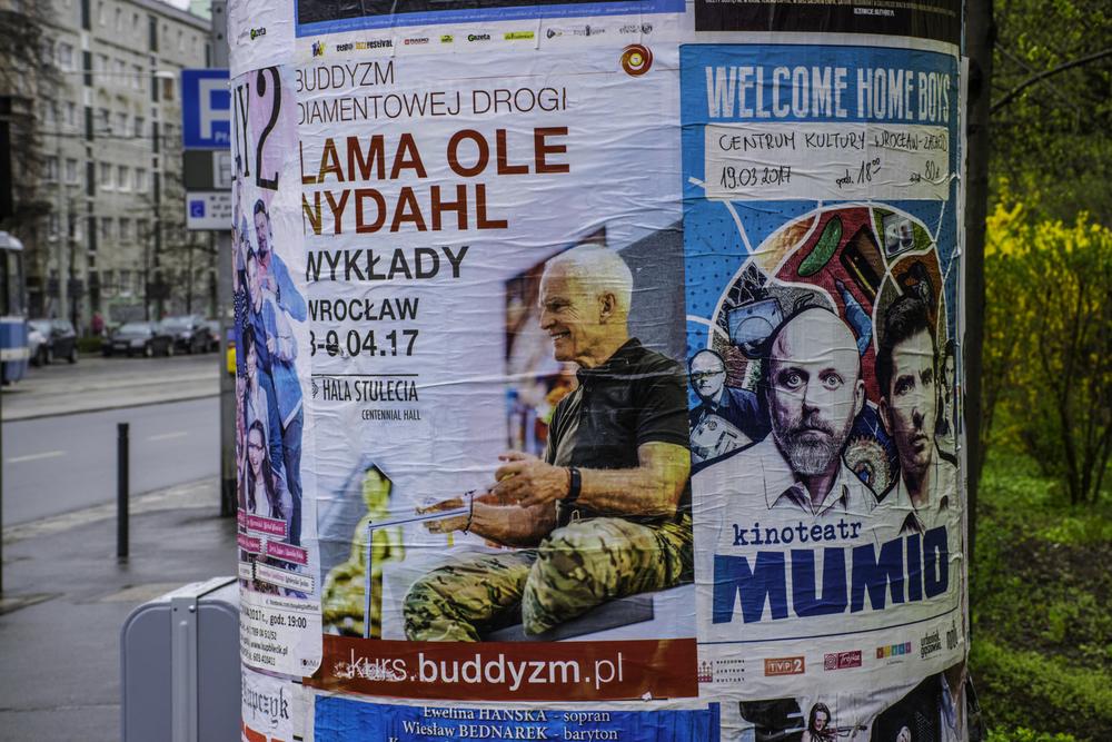 Лама Оле Нидал в Польше