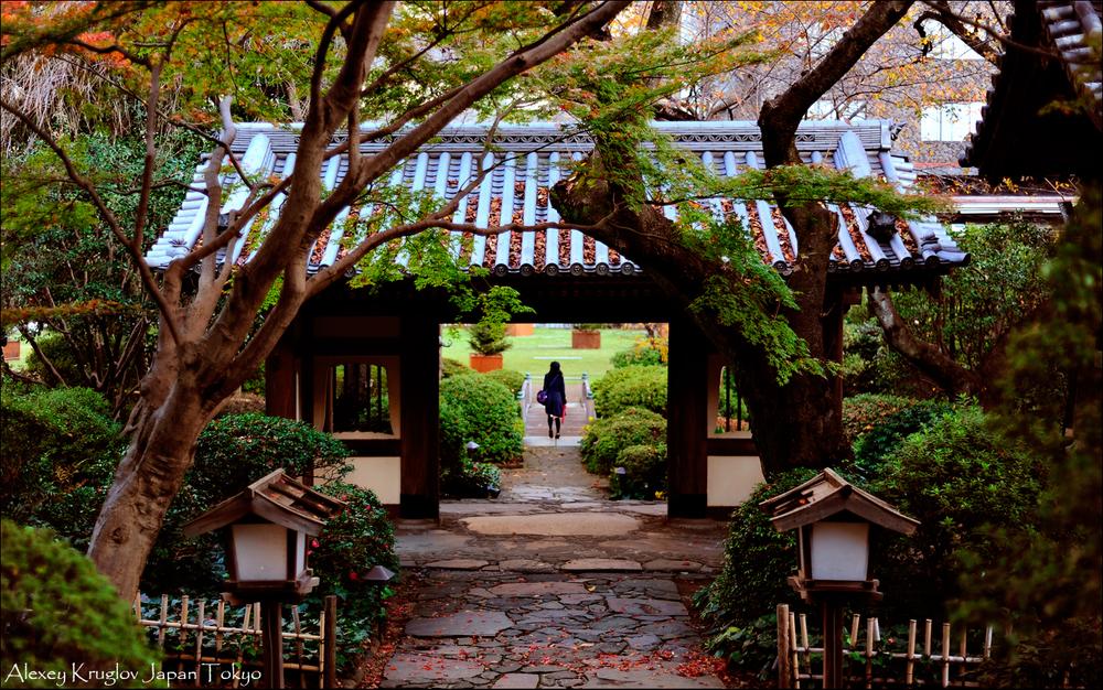 Япония осенью, туры в Японию