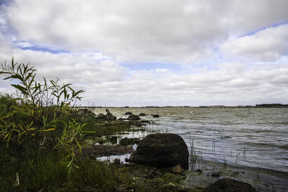 Lake Bolac, штат Виктория, Австралия