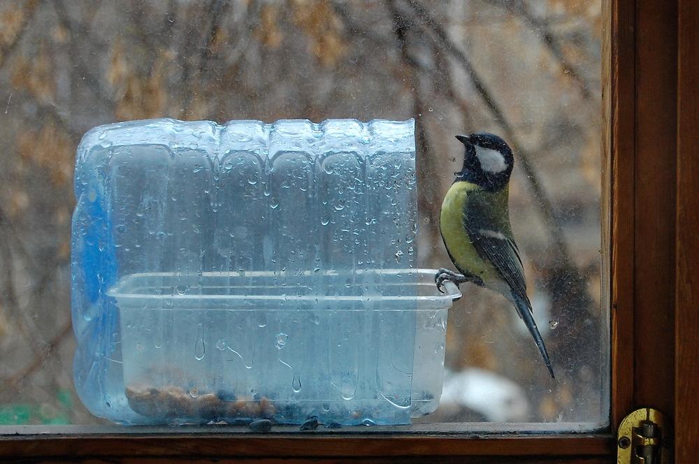 Как сделать кормушку для птиц Уютный дом своими руками