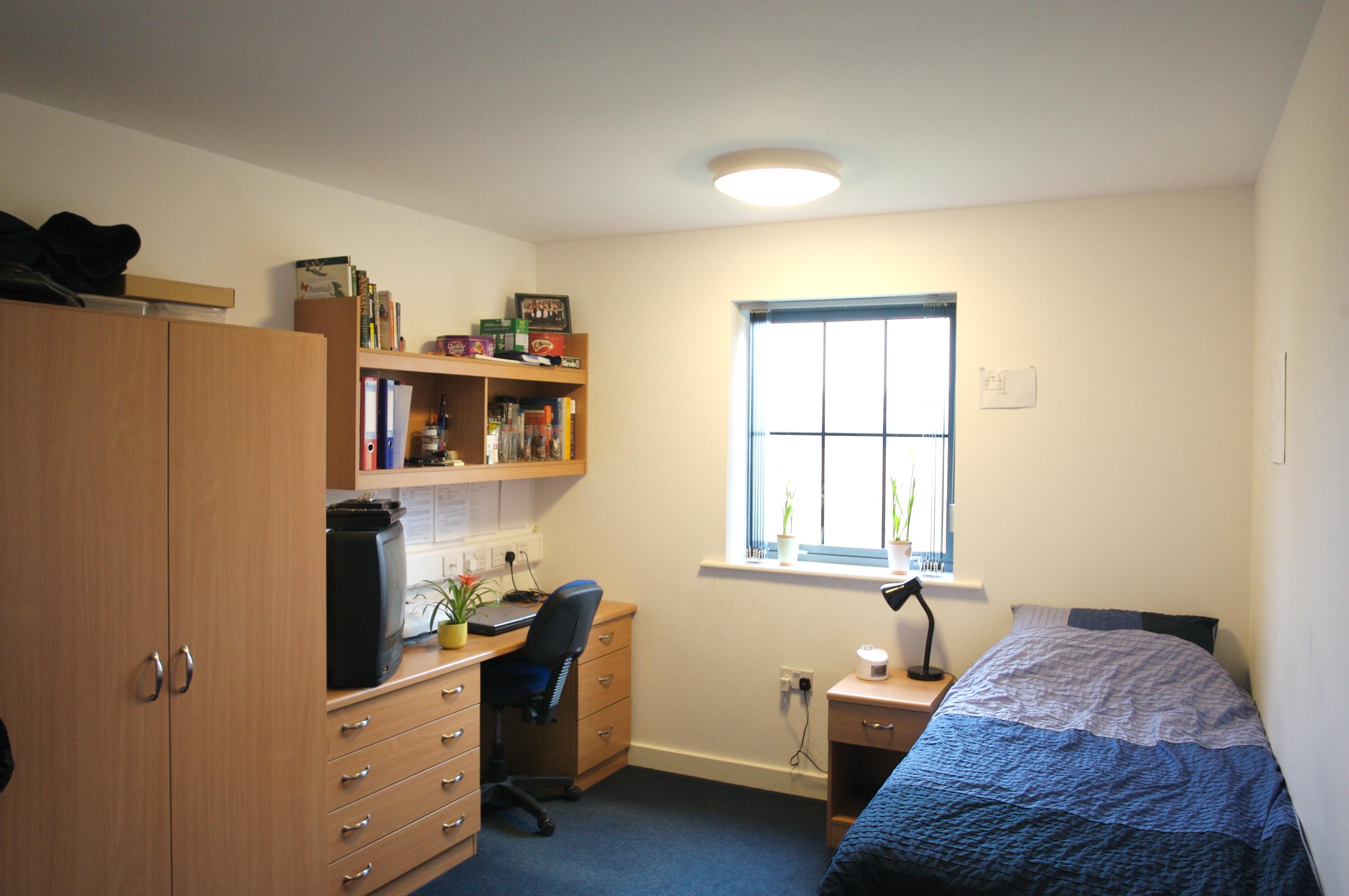 Студенты в спальне, Смотрите онлайн Горячие студенты трахаются в спальне 25 фотография