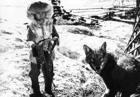 Коксерек сколько волка не корми