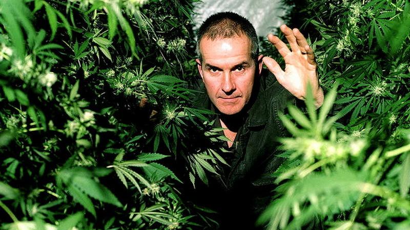 Фильмы и марихуана семена конопли гидропоники