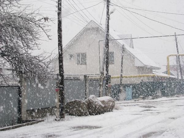 снег в алматы сегодня фото